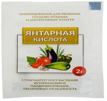 Янтарная кислота 2 грамма (150)